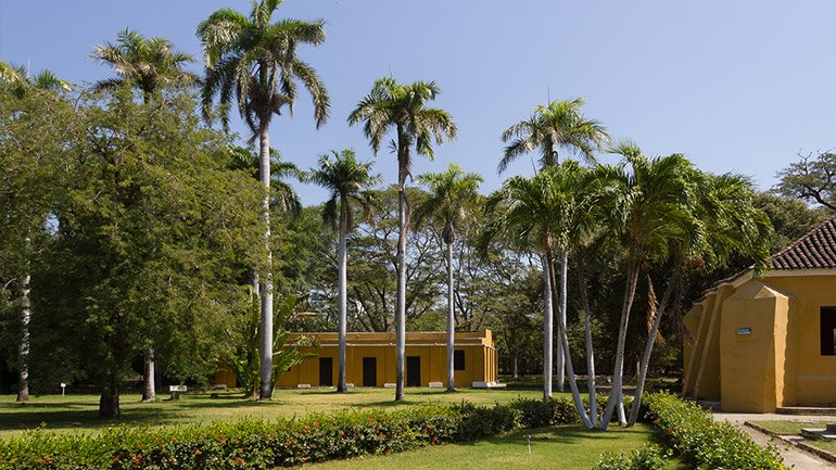 Quinta de San Pedro Alejandrino Colombia Santa Marta