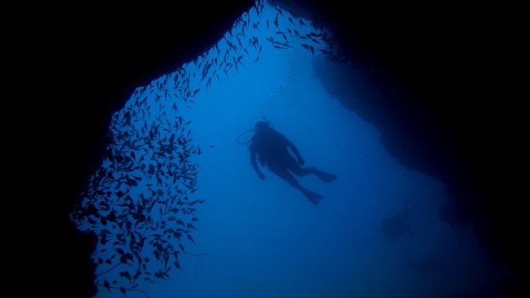 duiken taganga colombia scuba diven